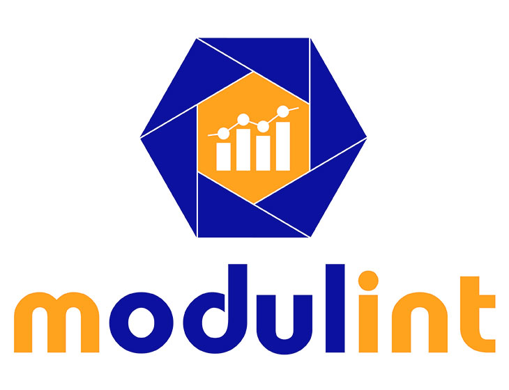 modulint - Logo